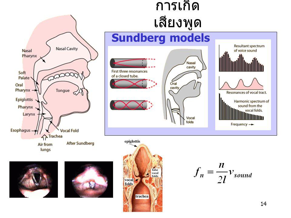 14 การเกิด เสียงพูด Sundberg models