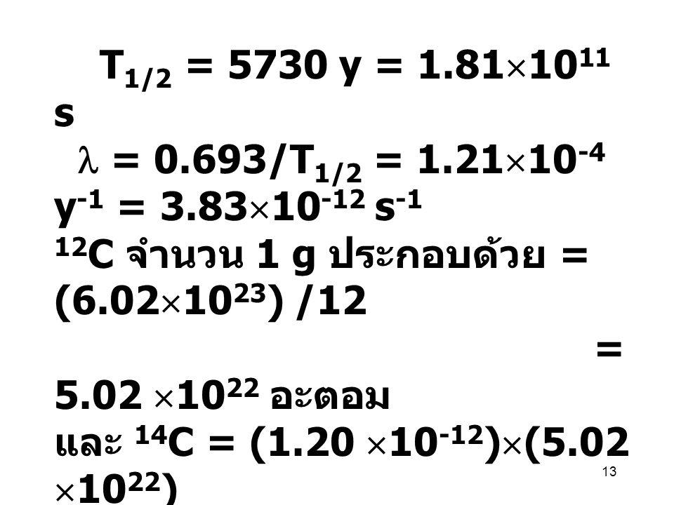 13 T 1/2 = 5730 y = 1.81  10 11 s = 0.693/T 1/2 = 1.21  10 -4 y -1 = 3.83  10 -12 s -1 12 C จำนวน 1 g ประกอบด้วย = (6.02  10 23 ) /12 = 5.02  10