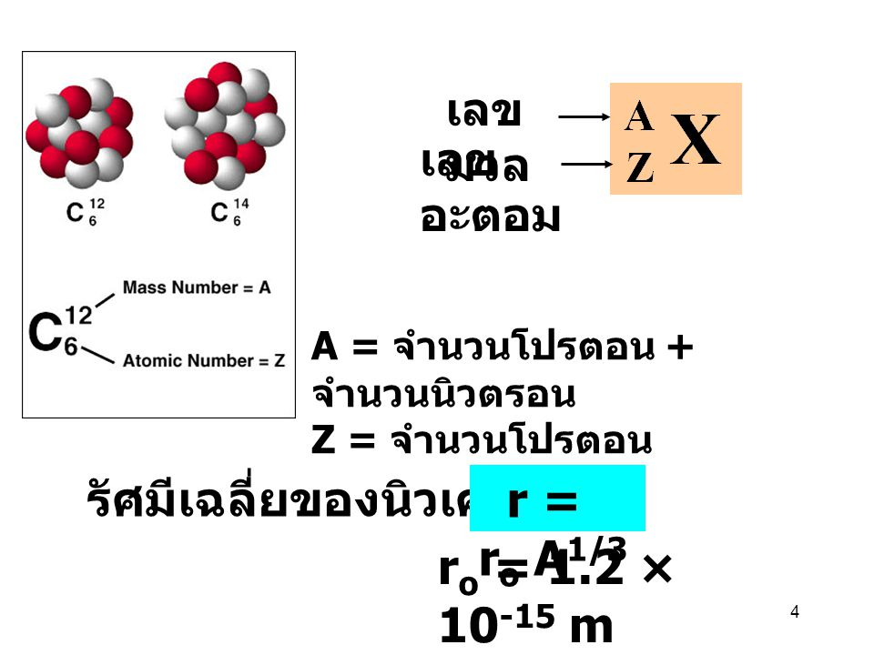 4 เลข มวล เลข อะตอม A = จำนวนโปรตอน + จำนวนนิวตรอน Z = จำนวนโปรตอน r o = 1.2 × 10 -15 m รัศมีเฉลี่ยของนิวเคลียส r = r o A 1/3