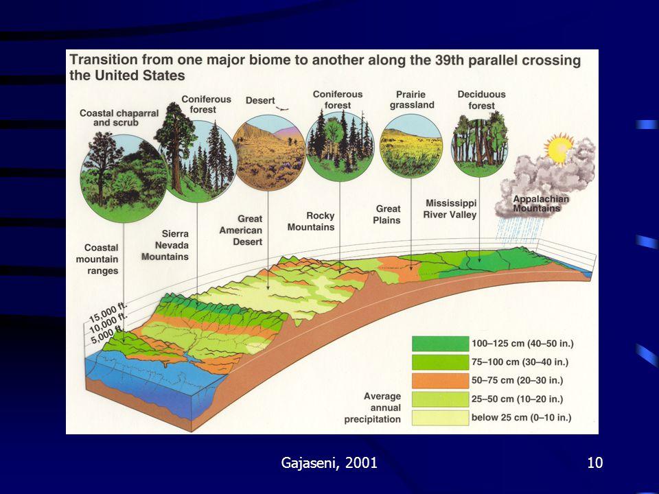 Gajaseni, 200110 Fig 111-4