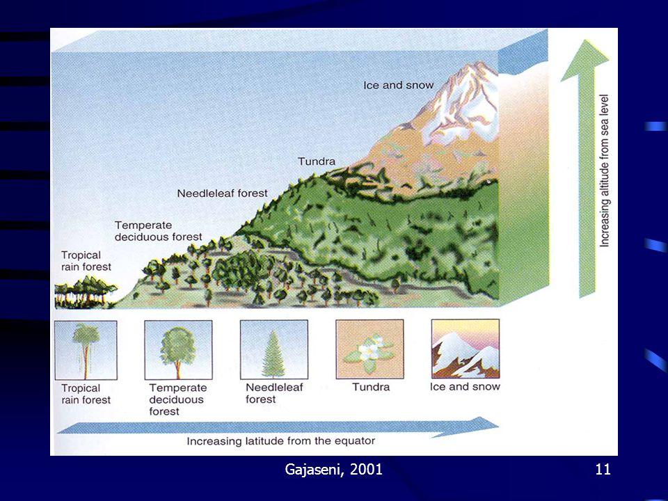 Gajaseni, 200111