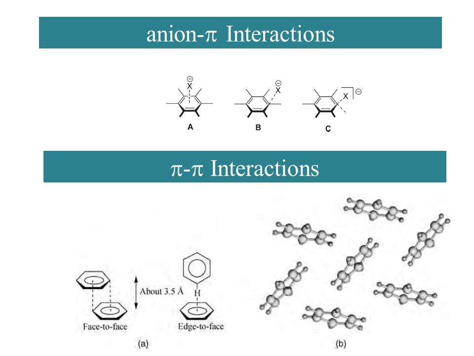 anion-  Interactions  -  Interactions