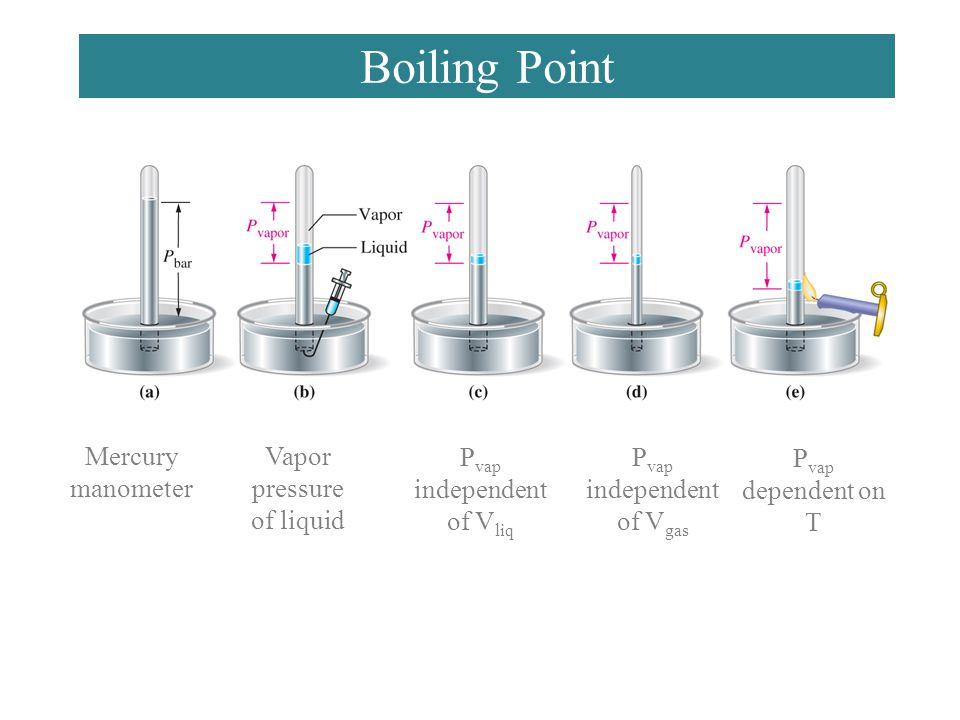 Boiling Point Mercury manometer Vapor pressure of liquid P vap independent of V liq P vap independent of V gas P vap dependent on T
