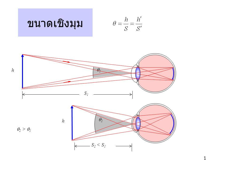 2 แว่นขยาย  S 2 < f h S 2 = 25 cm (ข)(ข)  S 2 = f h ∞ (ค)(ค) h (ก)(ก) 11 S 1 = 25 cm