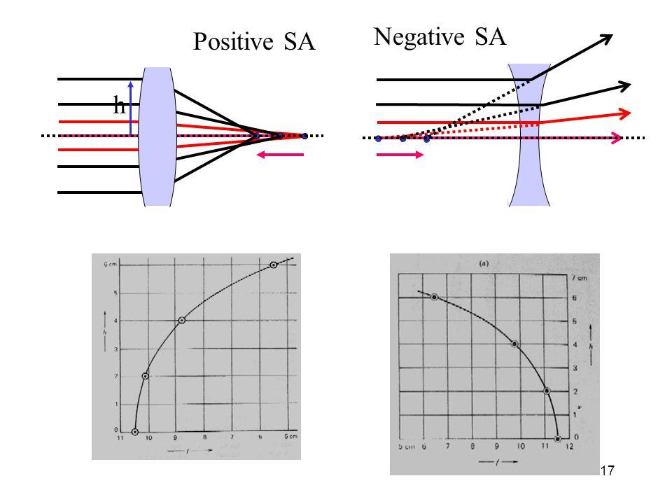 17 h Negative SA Positive SA
