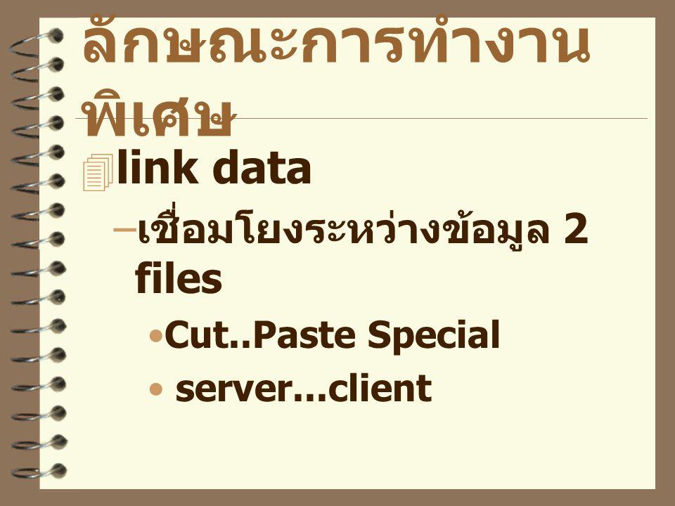 ลักษณะการทำงาน พิเศษ  link data – เชื่อมโยงระหว่างข้อมูล 2 files Cut..Paste Special server...client