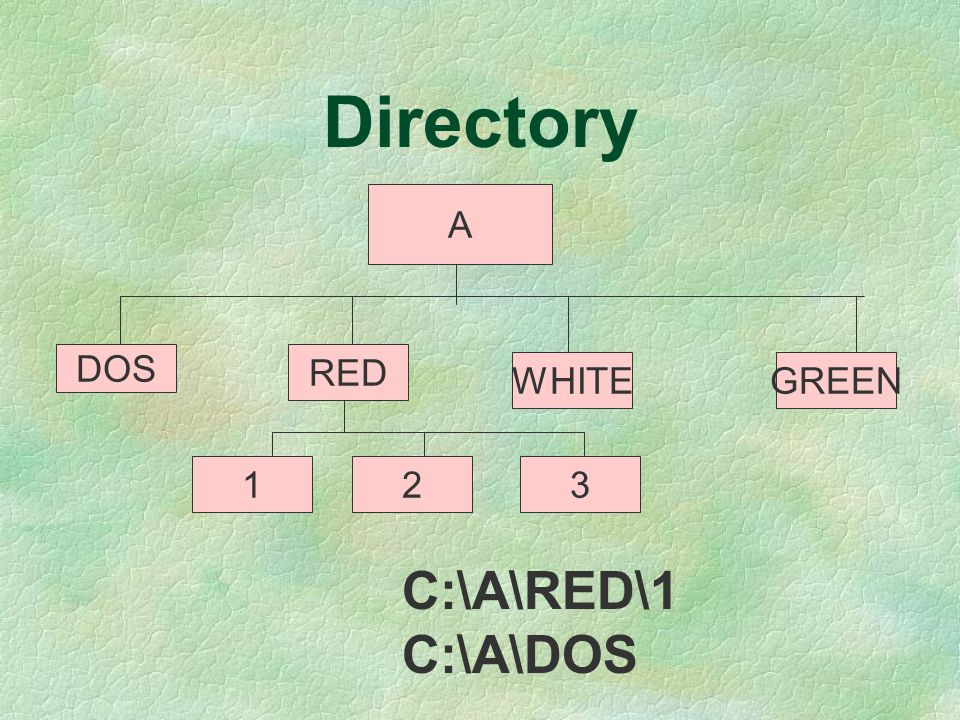 Directory A DOS RED WHITEGREEN 123 C:\A\RED\1 C:\A\DOS