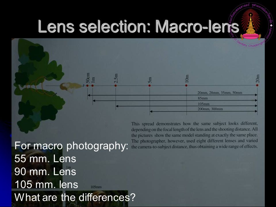 Lens selection: Macro-lens For macro photography: 55 mm.