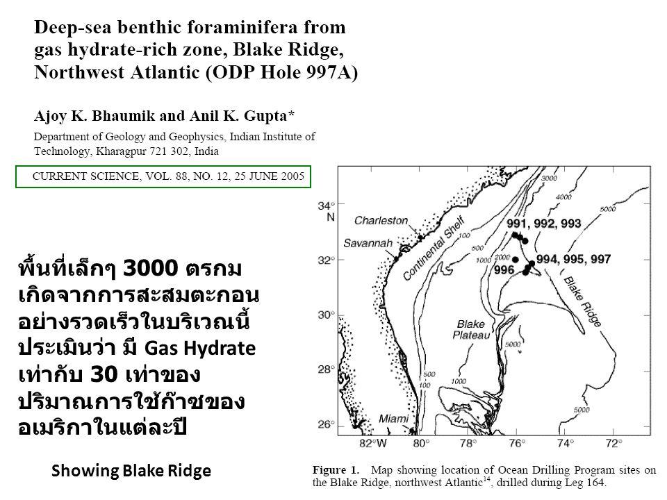 Showing Blake Ridge พื้นที่เล็กๆ 3000 ตรกม เกิดจากการสะสมตะกอน อย่างรวดเร็วในบริเวณนี้ ประเมินว่า มี Gas Hydrate เท่ากับ 30 เท่าของ ปริมาณการใช้ก๊าซขอ