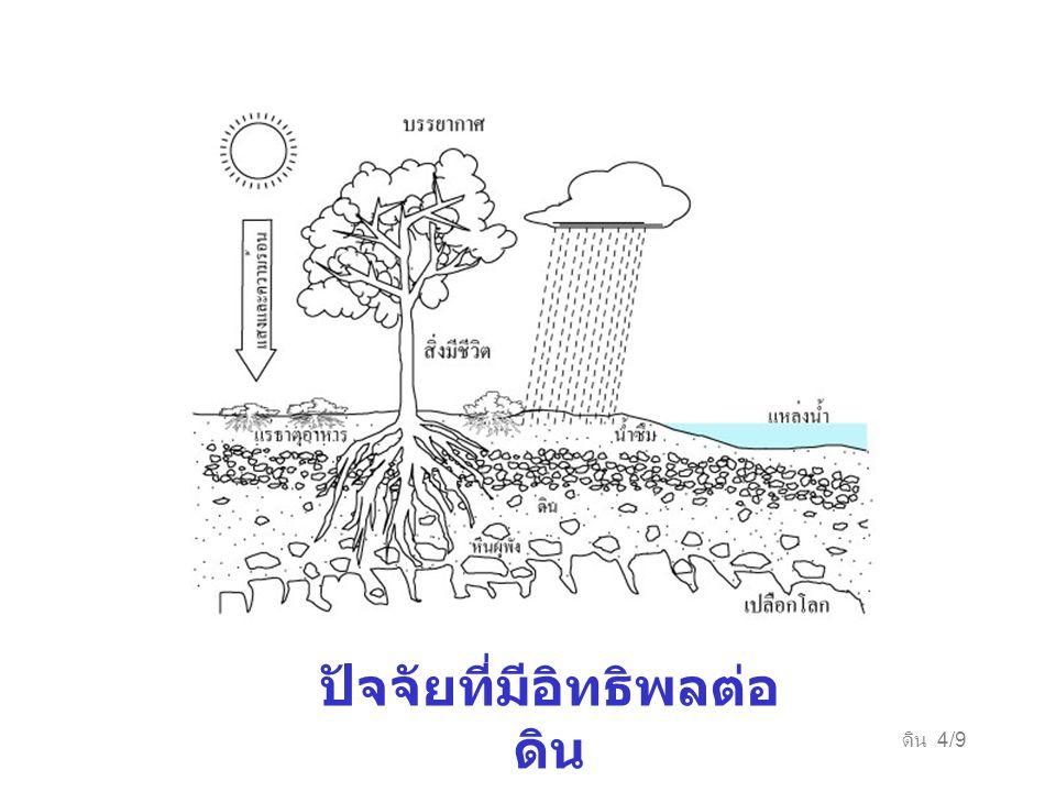 ดิน 4/9 ปัจจัยที่มีอิทธิพลต่อ ดิน