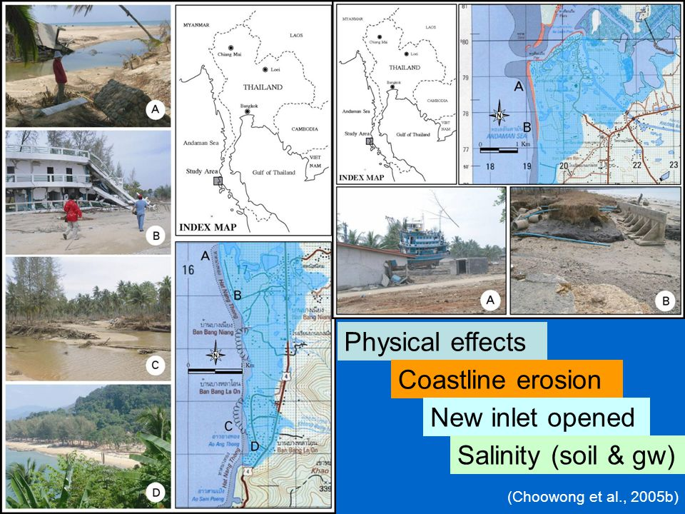 Physical effects Coastline erosion New inlet opened Salinity (soil & gw) (Choowong et al., 2005b)