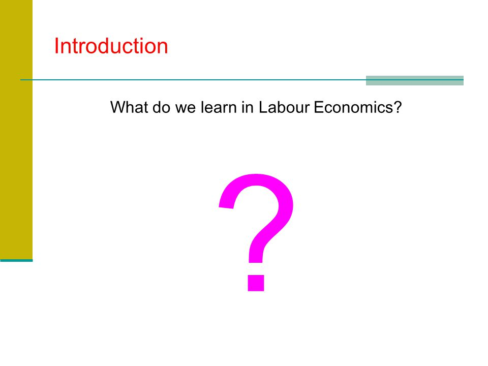 Introduction What do we learn in Labour Economics