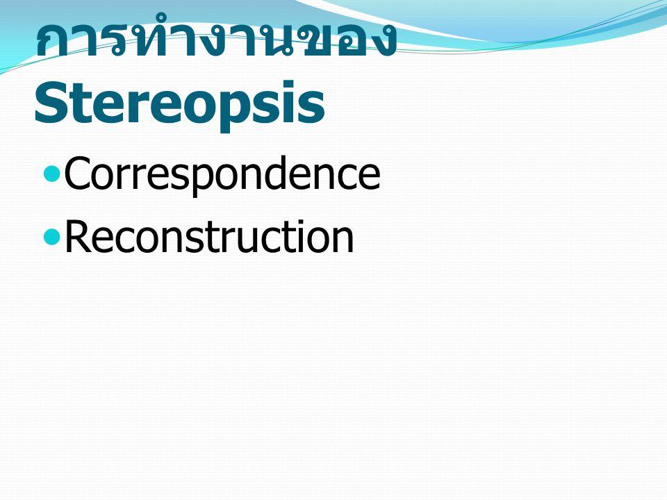 การทำงานของ Stereopsis Correspondence Reconstruction