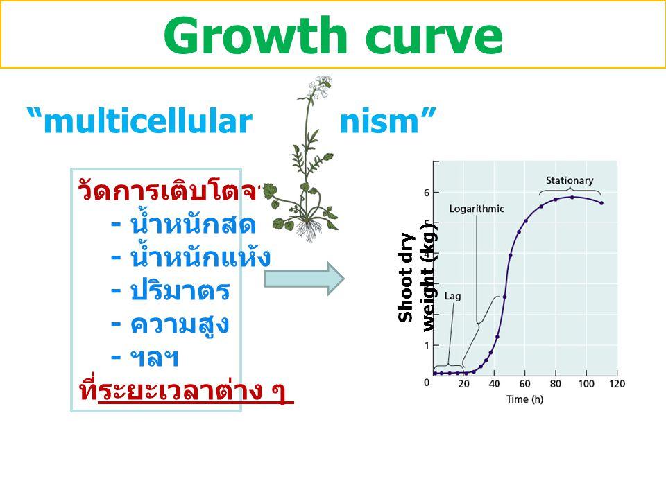 "Growth curve วัดการเติบโตจาก - น้ำหนักสด - น้ำหนักแห้ง - ปริมาตร - ความสูง - ฯลฯ ที่ระยะเวลาต่าง ๆ Shoot dry weight (kg) ""multicellular organism"""