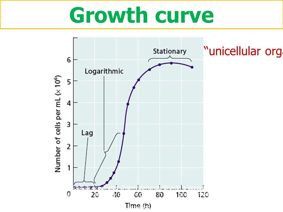 Growth curve วัดการเติบโตจาก - น้ำหนักสด - น้ำหนักแห้ง - ปริมาตร - ความสูง - ฯลฯ ที่ระยะเวลาต่าง ๆ Shoot dry weight (kg) multicellular organism