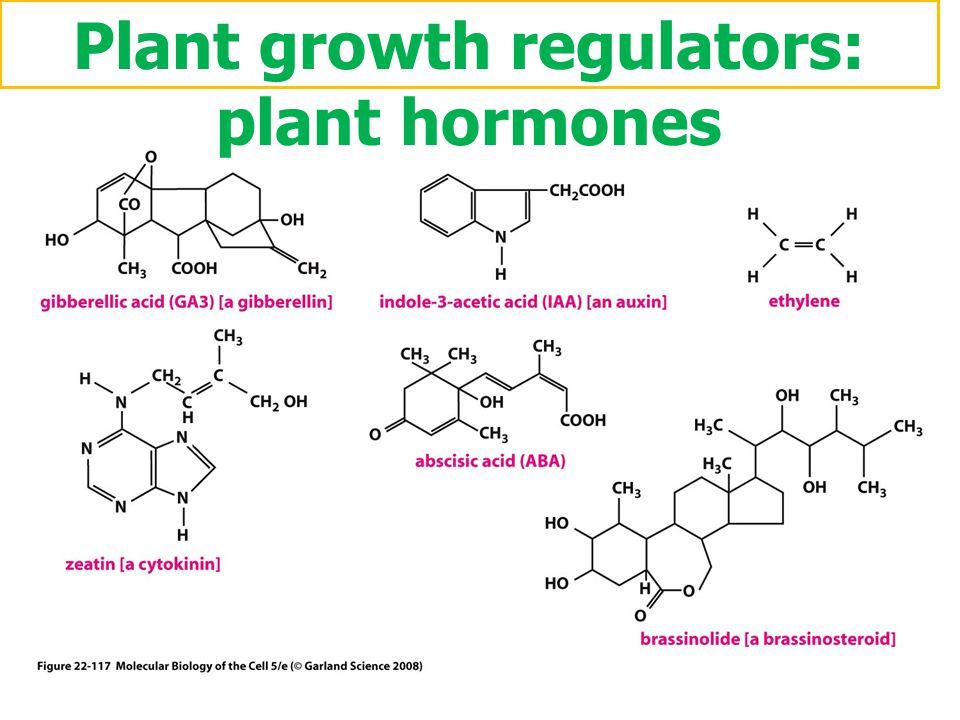 Plant growth regulators: plant hormones