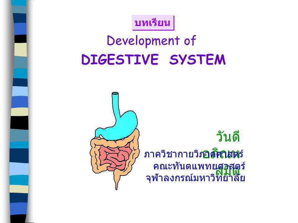 Development of DIGESTIVE SYSTEM วันดี อภิณห สมิต ภาควิชากายวิภาคศาสตร์ คณะทันตแพทยศาสตร์ จุฬาลงกรณ์มหาวิทยาลัย บทเรียน