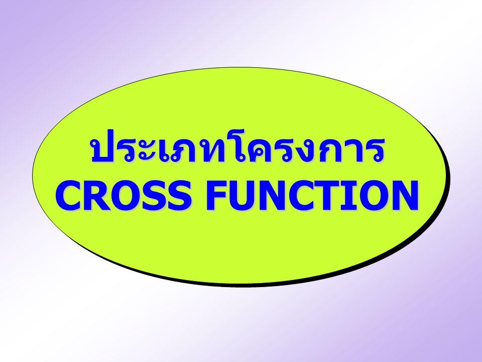 ประเภทโครงการ CROSS FUNCTION