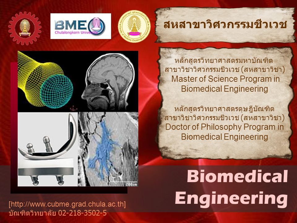 Biomedical Engineering สหสาขาวิศวกรรมชีวเวช หลักสูตรวิทยาศาสตรมหาบัณฑิต สาขาวิชาวิศวกรรมชีวเวช ( สหสาขาวิชา ) Master of Science Program in Biomedical