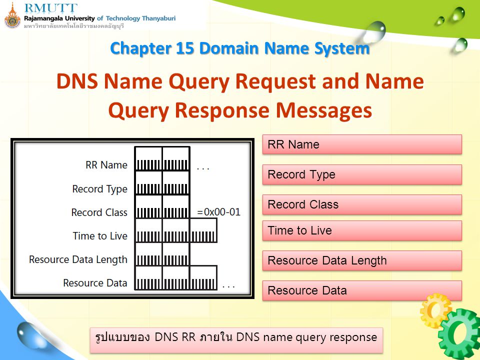 Resource Data รูปแบบของ DNS RR ภายใน DNS name query response DNS Name Query Request and Name Query Response Messages Record Type Record Class RR Name