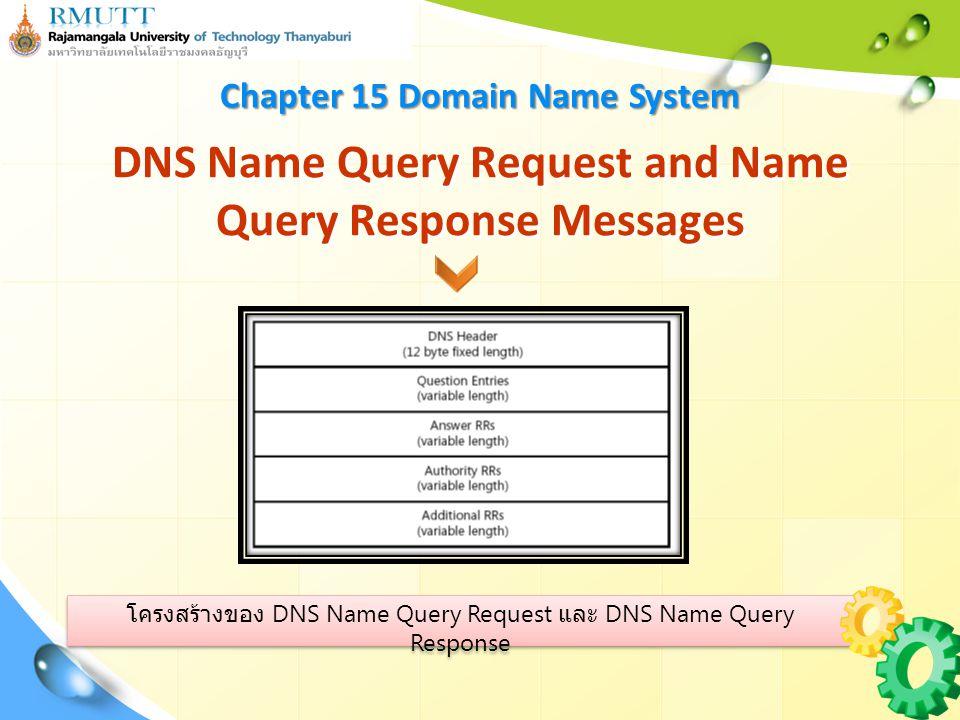 โครงสร้างของ DNS Name Query Request และ DNS Name Query Response DNS Name Query Request and Name Query Response Messages Chapter 15 Domain Name System