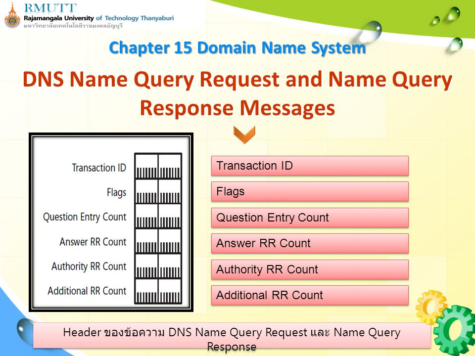ส่วนประกอบภายใน Flag field DNS Name Query Request and Name Query Response Messages Operation Code Truncation Return Code Reserved Recursion Available Recursion Desired Authoritative Answer Request/Response Chapter 15 Domain Name System
