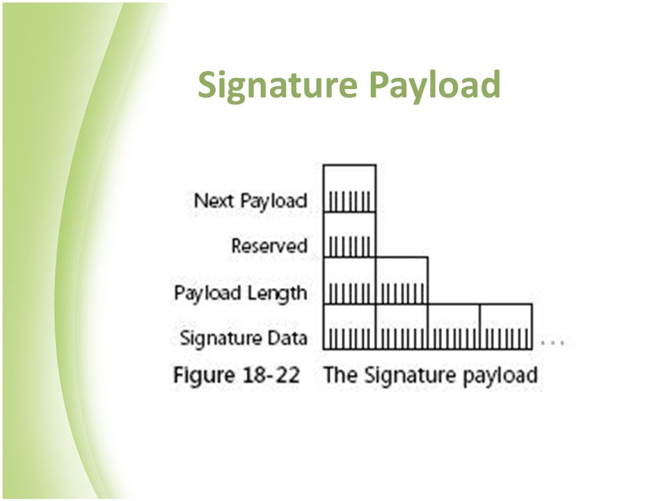 Signature Payload