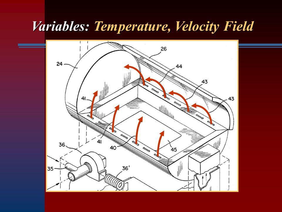 Variables: Temperature, Velocity Field