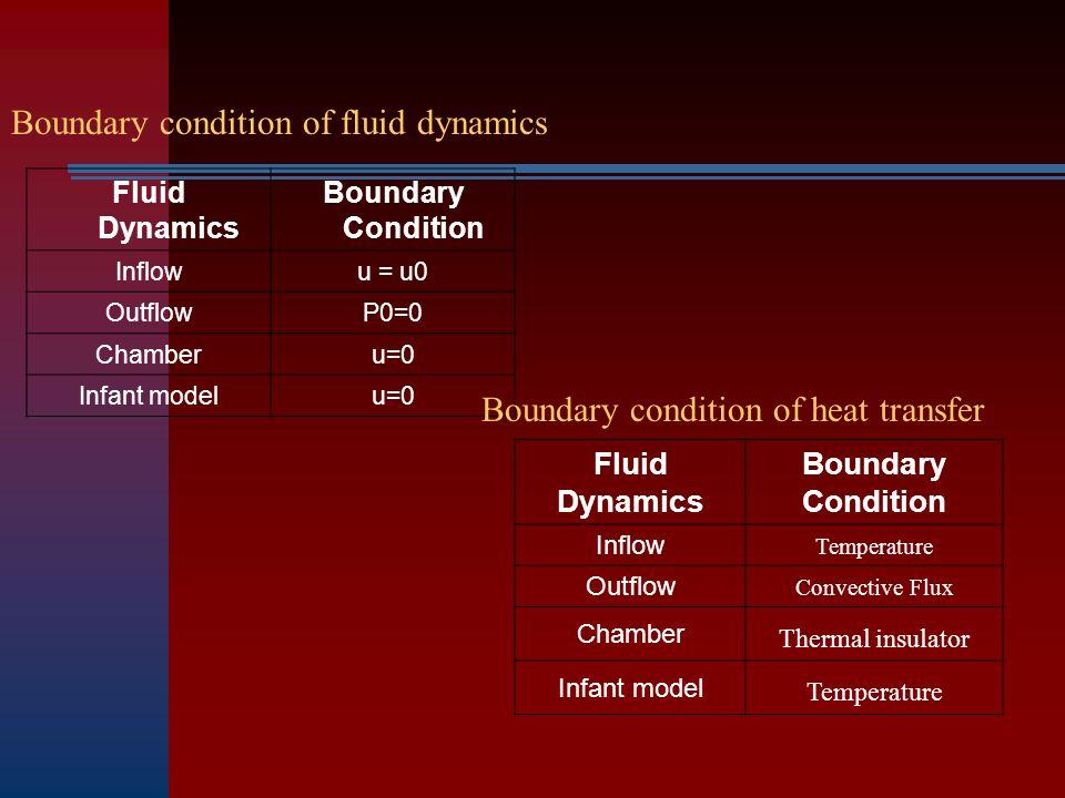 Fluid Dynamics Boundary Condition Inflowu = u0 OutflowP0=0 Chamberu=0 Infant modelu=0 Boundary condition of fluid dynamics Boundary condition of heat