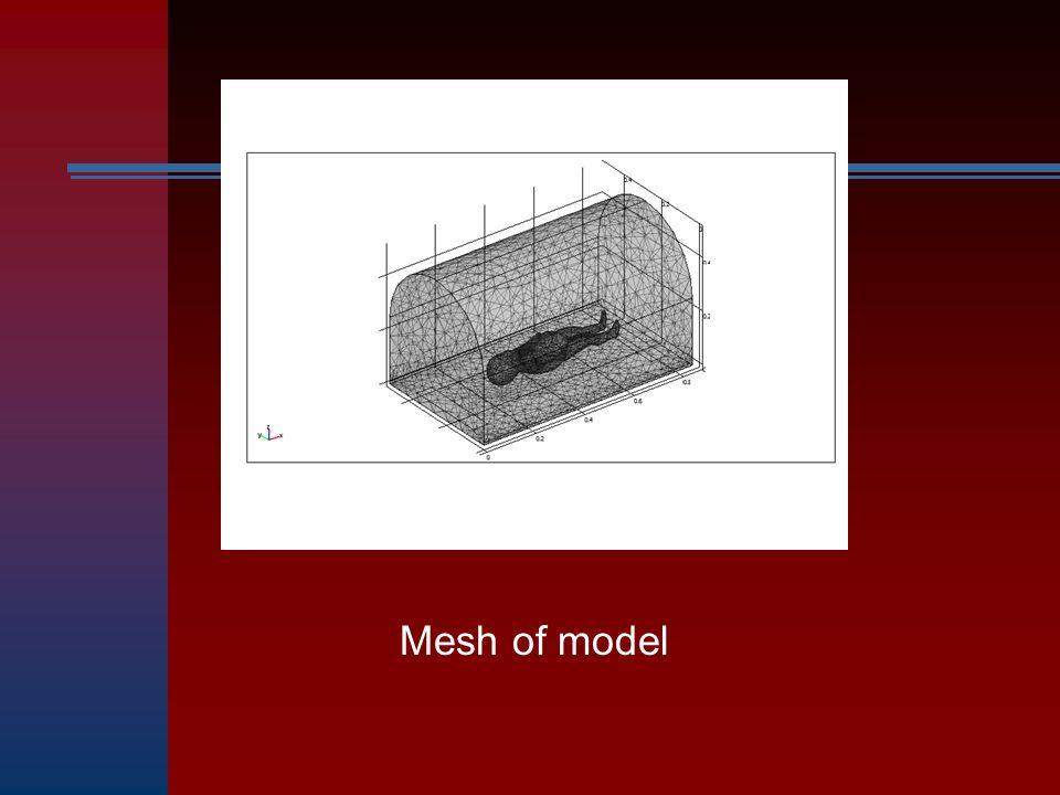 Mesh of model