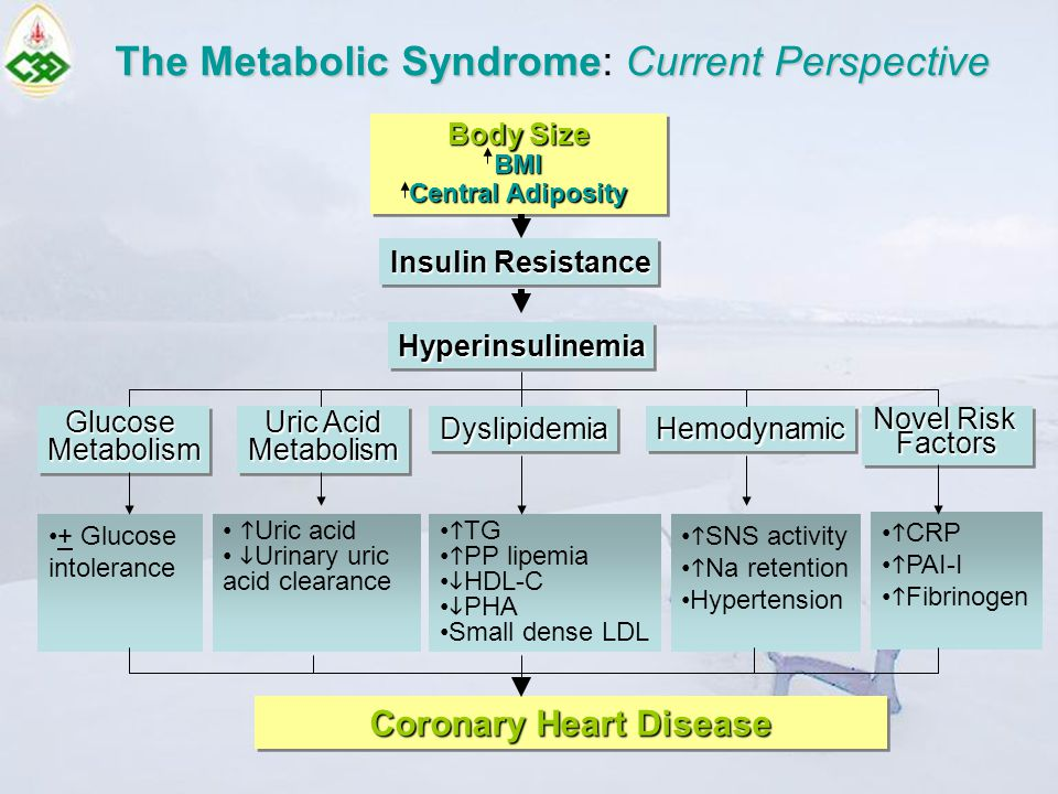 The Metabolic SyndromeCurrent Perspective The Metabolic Syndrome: Current Perspective Body Size BMI Central Adiposity Body Size BMI Central Adiposity