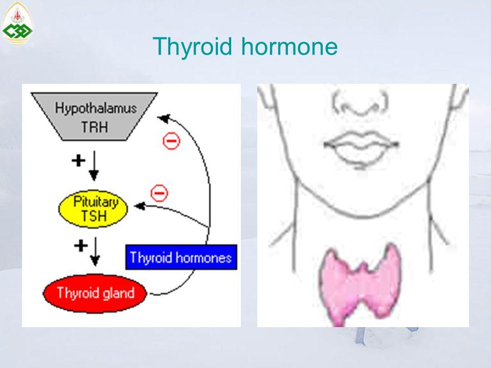 Common thyroid problems Goiter Thyroid cancer Hypothyroidism Hyperthyroidism Thyroiditis