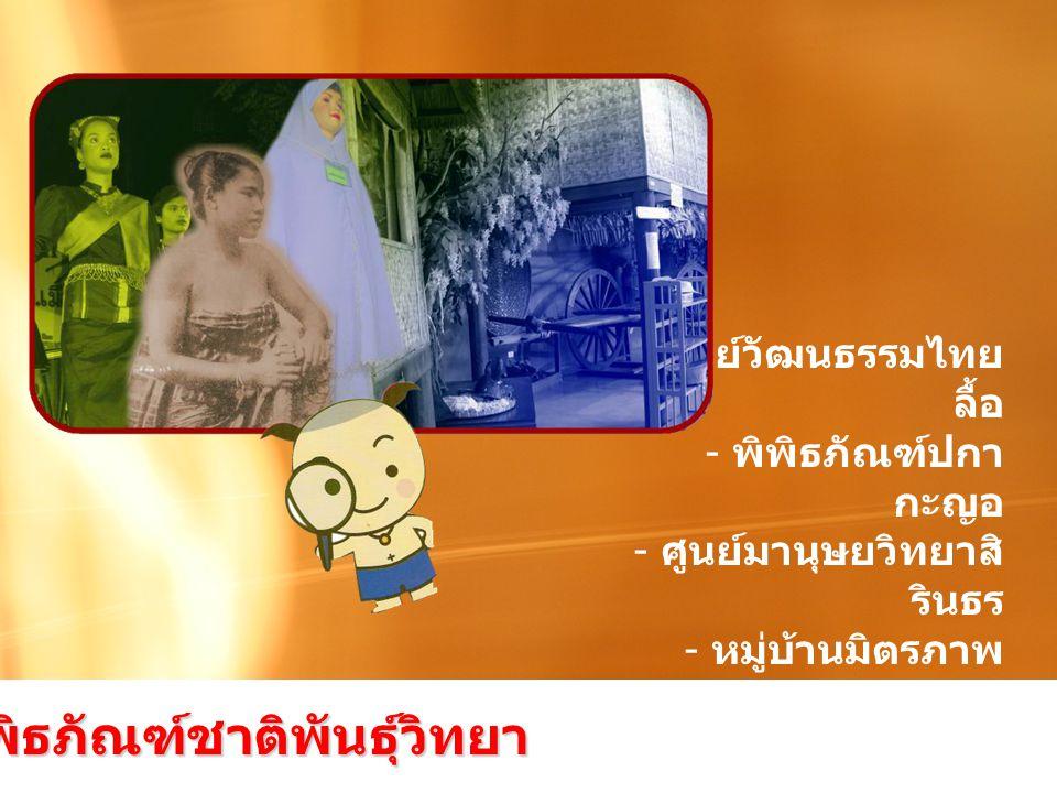- ศูนย์วัฒนธรรมไทย ลื้อ - พิพิธภัณฑ์ปกา กะญอ - ศูนย์มานุษยวิทยาสิ รินธร - หมู่บ้านมิตรภาพ ไทย - เวียดนาม กลุ่มพิพิธภัณฑ์ชาติพันธุ์วิทยา