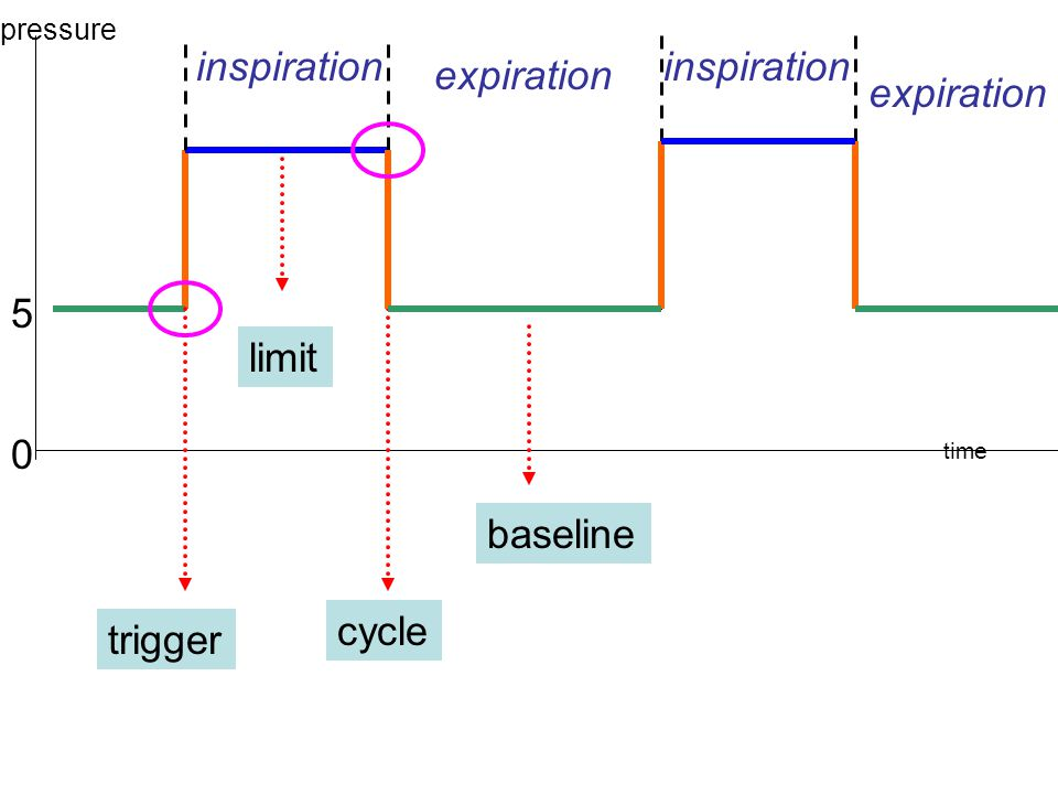 Phase variables 4 phases The change from expiration to inspiration (triggered) Inspiration (limited) The change from inspiration to expiration (cycled) Expiration (baseline,PEEP)