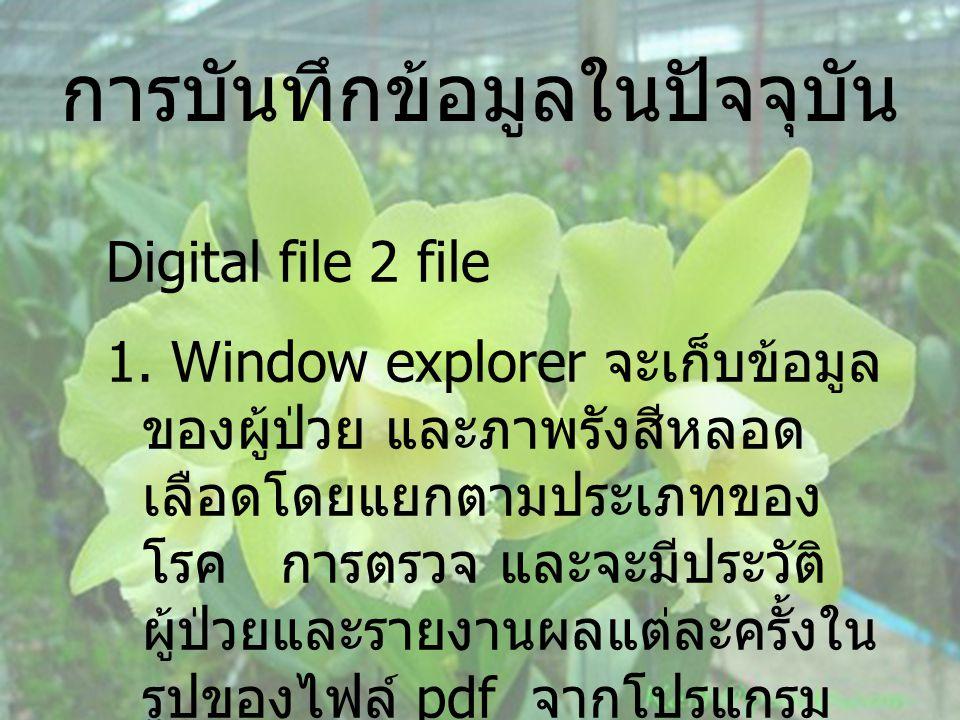 การบันทึกข้อมูลในปัจจุบัน Digital file 2 file 1. Window explorer จะเก็บข้อมูล ของผู้ป่วย และภาพรังสีหลอด เลือดโดยแยกตามประเภทของ โรค การตรวจ และจะมีปร