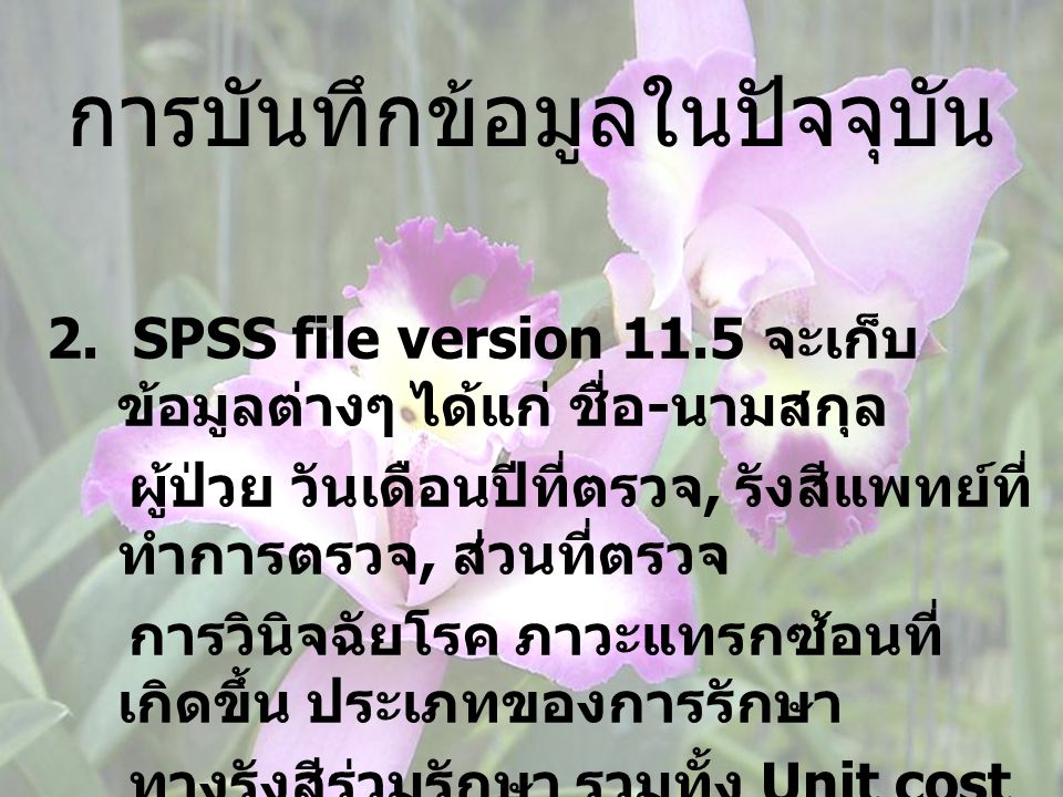 การบันทึกข้อมูลในปัจจุบัน 2. SPSS file version 11.5 จะเก็บ ข้อมูลต่างๆ ได้แก่ ชื่อ - นามสกุล ผู้ป่วย วันเดือนปีที่ตรวจ, รังสีแพทย์ที่ ทำการตรวจ, ส่วนท