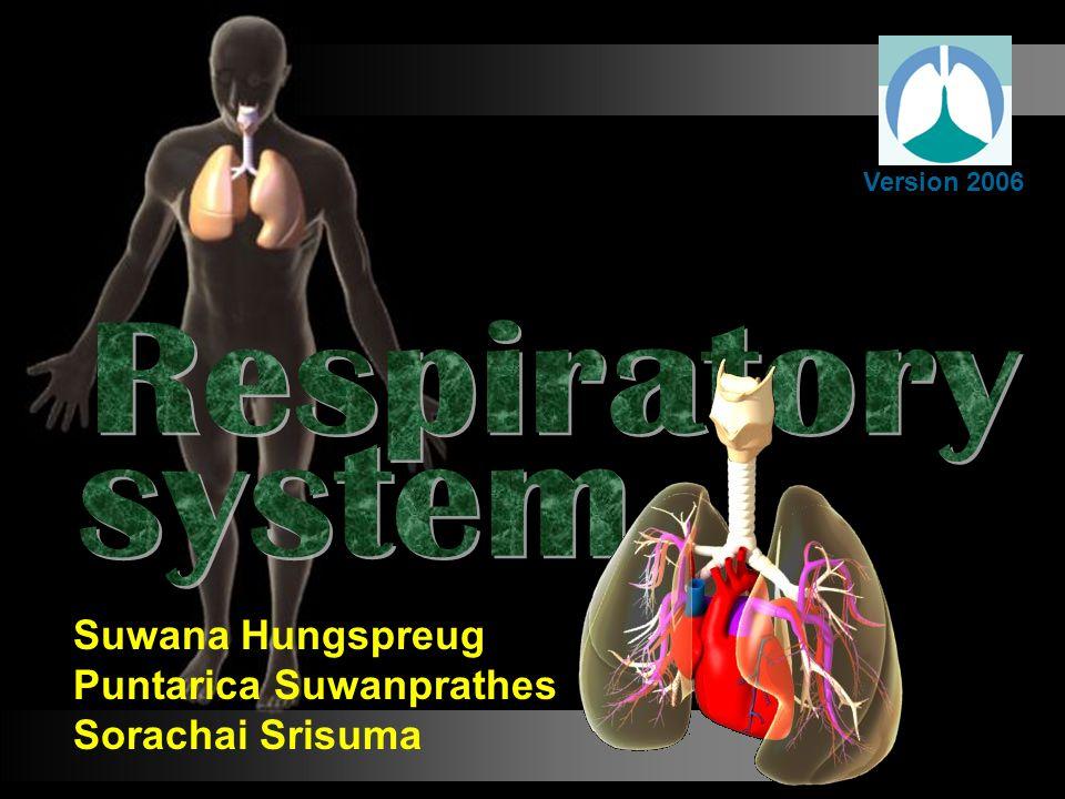 Version 2006 Suwana Hungspreug Puntarica Suwanprathes Sorachai Srisuma