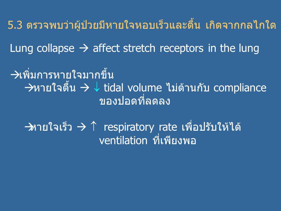 5.3 ตรวจพบว่าผู้ป่วยมีหายใจหอบเร็วและตื้น เกิดจากกลไกใด Lung collapse  affect stretch receptors in the lung  เพิ่มการหายใจมากขึ้น  หายใจตื้น   tidal volume ไม่ต้านกับ compliance ของปอดที่ลดลง  หายใจเร็ว   respiratory rate เพื่อปรับให้ได้ ventilation ที่เพียงพอ