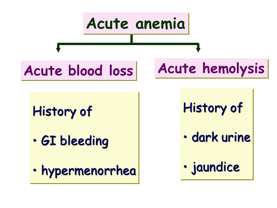 Acute anemia Acute blood loss Acute hemolysis History of GI bleeding GI bleeding hypermenorrhea hypermenorrhea History of GI bleeding GI bleeding hype