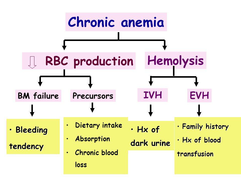 Chronic anemia AA Myeloph. Iron def. CRF Megaloblastic PNH MAHA Thalassemia HS BM failurePrecursors RBC production Hemolysis Dietary intake Absorption