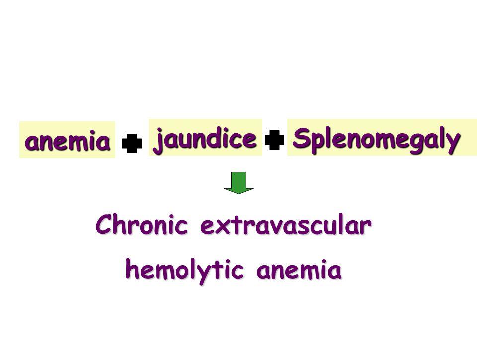 anemiajaundiceSplenomegaly Chronic extravascular hemolytic anemia
