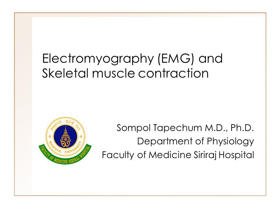 Objectives นักศึกษาสามารถบอกประโยชน์ของการวัด EMG ได้ นักศึกษาสามารถบอกวิธีการวัด EMG ได้ นักศึกษาสามารถอธิบายความหมายของคำ ต่อไปนี้ได้ –Motor unit –Recruitment of motor unit –Summation of muscle contraction นักศึกษาสามารถอธิบายความหมายและกลไก การเกิด muscle fatigue ได้