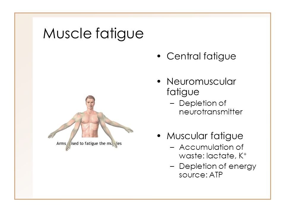 Muscle fatigue Central fatigue Neuromuscular fatigue –Depletion of neurotransmitter Muscular fatigue –Accumulation of waste: lactate, K + –Depletion o