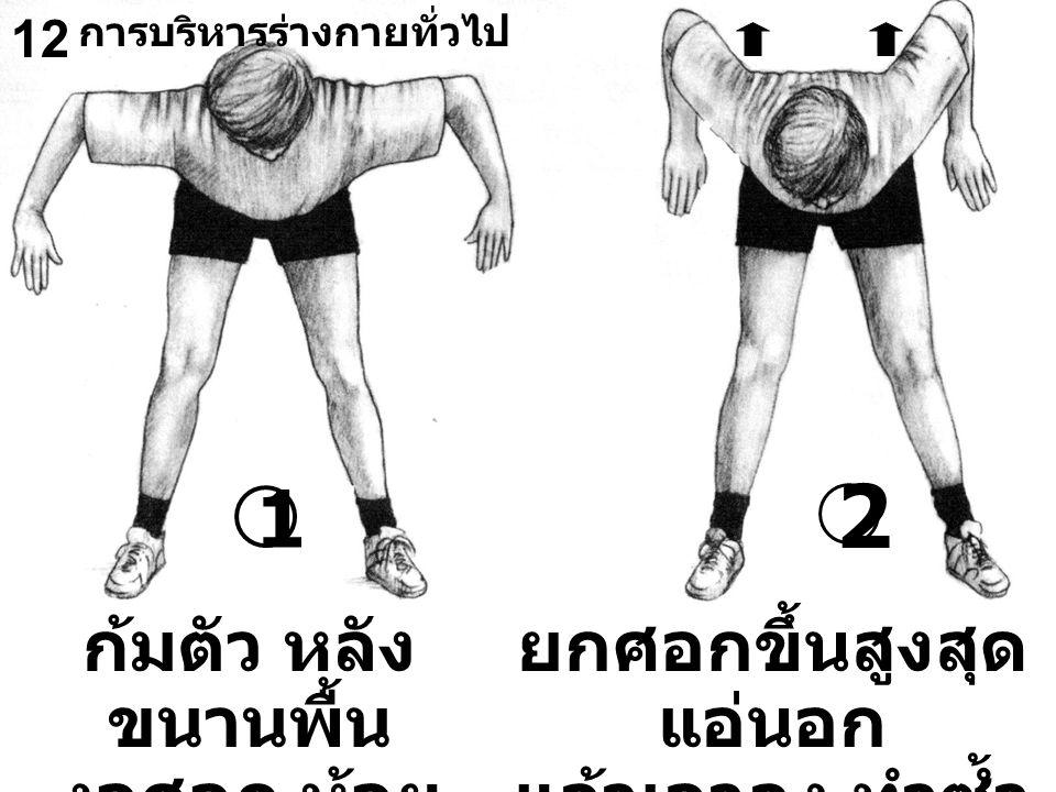 12 ก้มตัว หลัง ขนานพื้น งอศอก ห้อย มือลง ยกศอกขึ้นสูงสุด แอ่นอก แล้วเอาลง ทำซ้ำ 10 ครั้ง 1 2 การบริหารร่างกายทั่วไป