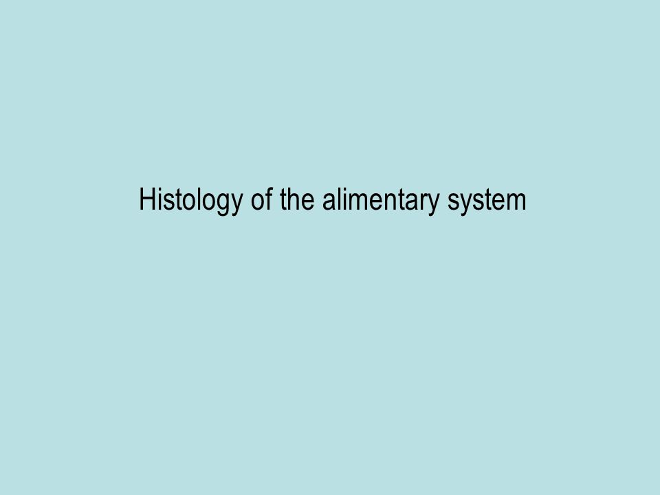 Histology of the alimentary system