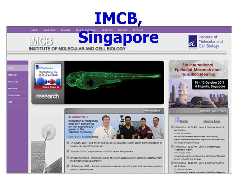 IMCB, Singapore