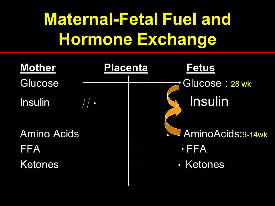 Maternal-Fetal Fuel and Hormone Exchange Mother Placenta Fetus Glucose Glucose : 28 wk Insulin Amino Acids AminoAcids: 9-14wk FFA Ketones