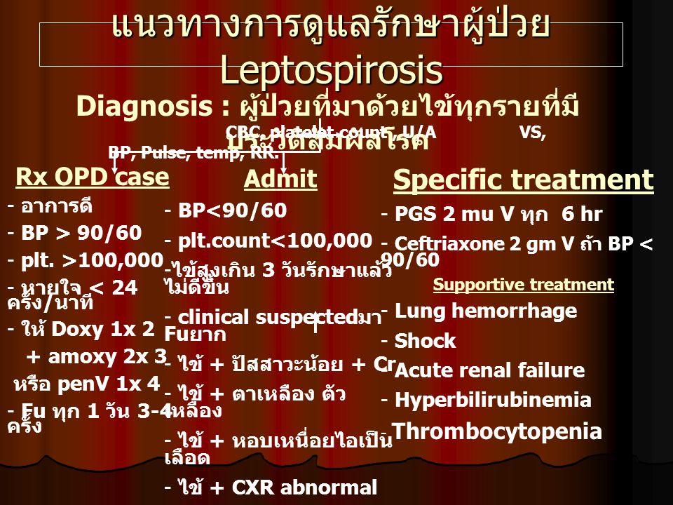 แนวทางการดูแลรักษาผู้ป่วย Leptospirosis Diagnosis : ผู้ป่วยที่มาด้วยไข้ทุกรายที่มี ประวัติสัมผัสโรค CBC, platelet count, U/A VS, BP, Pulse, temp, RR.