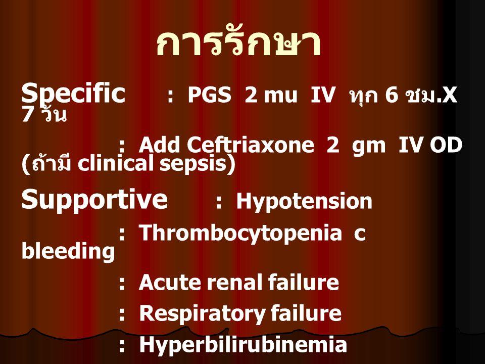 การรักษา Specific : PGS 2 mu IV ทุก 6 ชม.X 7 วัน : Add Ceftriaxone 2 gm IV OD ( ถ้ามี clinical sepsis) Supportive : Hypotension : Thrombocytopenia c b