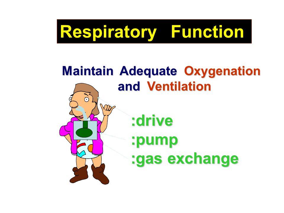 Respiratory Function Maintain Adequate Oxygenation and Ventilation and Ventilation :drive:pump :gas exchange